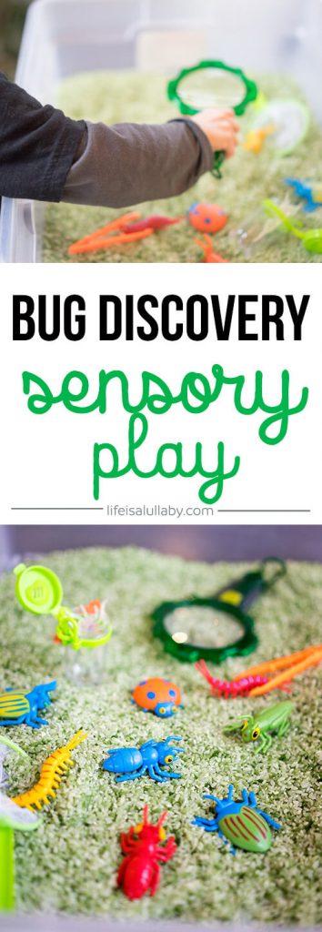 Bug Discovery Sensory Bin