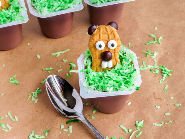 Groundhog Day Pudding | Groundhog Day Snack Idea