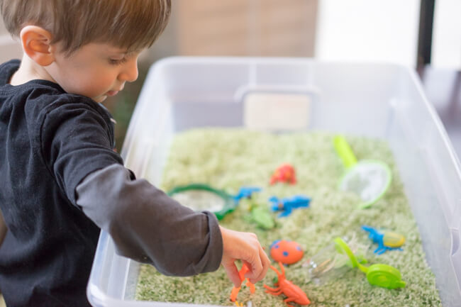 Playing with the bug sensory bin
